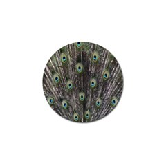 Background Peacock Feathers Golf Ball Marker (4 Pack)