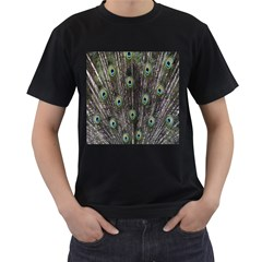 Background Peacock Feathers Men s T Shirt (black) (two Sided) by Sapixe
