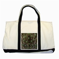 Background Peacock Feathers Two Tone Tote Bag by Sapixe