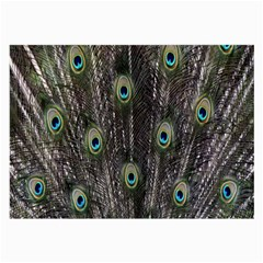 Background Peacock Feathers Large Glasses Cloth (2 Side)