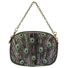 Background Peacock Feathers Chain Purse (one Side)