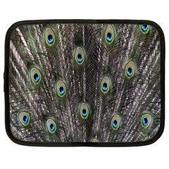 Background Peacock Feathers Netbook Case (xl)