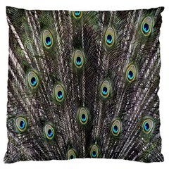 Background Peacock Feathers Large Flano Cushion Case (one Side) by Sapixe