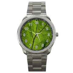 Butterbur Leaf Plant Veins Pattern Sport Metal Watch