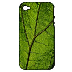 Butterbur Leaf Plant Veins Pattern Apple Iphone 4/4s Hardshell Case (pc+silicone)