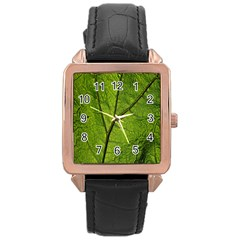 Butterbur Leaf Plant Veins Pattern Rose Gold Leather Watch