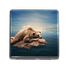 Bear Water Memory Card Reader (square 5 Slot)