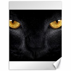 Face Black Eye Cat Canvas 18  X 24  by AnjaniArt