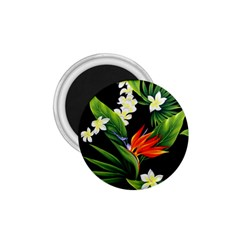 Frangipani Flower 1 75  Magnets by AnjaniArt