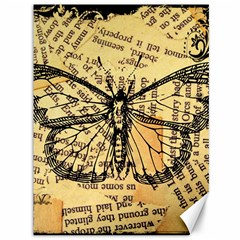 Vintage Butterfly Art Antique Canvas 36  X 48  by AnjaniArt