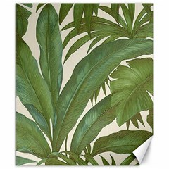 Green Palm Leaf Wallpaper Canvas 8  X 10
