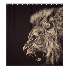 Angry Male Lion Shower Curtain 66  X 72  (large)
