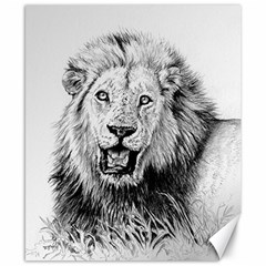 Lion Wildlife Art And Illustration Pencil Canvas 8  X 10