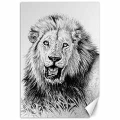 Lion Wildlife Art And Illustration Pencil Canvas 12  X 18