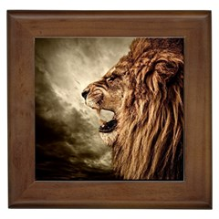 Roaring Lion Framed Tiles