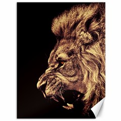 Angry Male Lion Gold Canvas 36  X 48