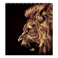 Angry Male Lion Gold Shower Curtain 66  X 72  (large)