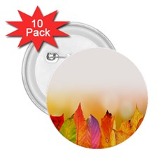 Autumn Leaves Colorful Fall Foliage 2 25  Buttons (10 Pack)  by Samandel
