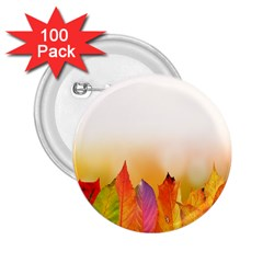 Autumn Leaves Colorful Fall Foliage 2 25  Buttons (100 Pack)  by Samandel
