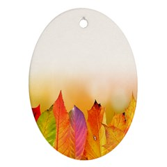 Autumn Leaves Colorful Fall Foliage Oval Ornament (two Sides) by Samandel