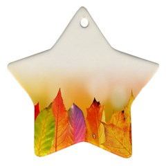 Autumn Leaves Colorful Fall Foliage Star Ornament (two Sides) by Samandel