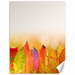 Autumn Leaves Colorful Fall Foliage Canvas 12  X 16  by Samandel