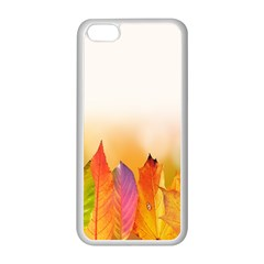 Autumn Leaves Colorful Fall Foliage Apple Iphone 5c Seamless Case (white) by Samandel