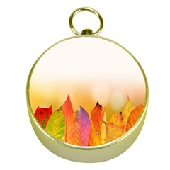 Autumn Leaves Colorful Fall Foliage Gold Compasses by Samandel