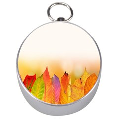 Autumn Leaves Colorful Fall Foliage Silver Compasses by Samandel