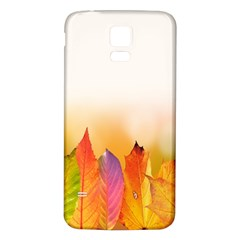 Autumn Leaves Colorful Fall Foliage Samsung Galaxy S5 Back Case (white) by Samandel