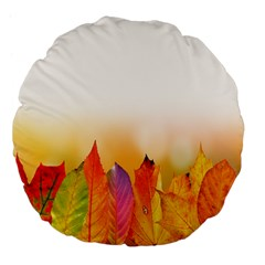 Autumn Leaves Colorful Fall Foliage Large 18  Premium Flano Round Cushions by Samandel
