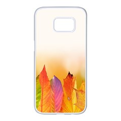 Autumn Leaves Colorful Fall Foliage Samsung Galaxy S7 Edge White Seamless Case by Samandel