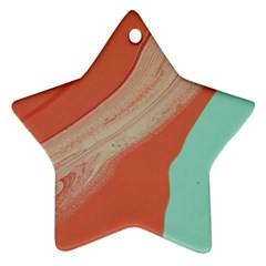 Clay And Water Ornament (star)