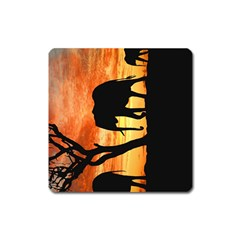 Family Of African Elephants Square Magnet by Samandel