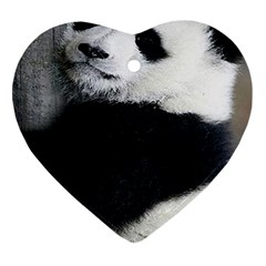Panda Bear Sleeping Ornament (heart)
