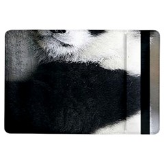 Panda Bear Sleeping Ipad Air Flip by Samandel