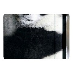Panda Bear Sleeping Apple Ipad 9 7