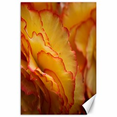 Flowers Leaves Leaf Floral Summer Canvas 24  X 36