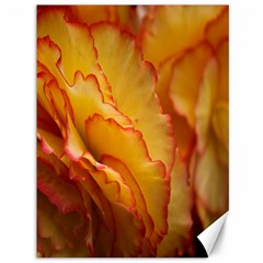 Flowers Leaves Leaf Floral Summer Canvas 36  X 48  by Samandel