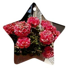 Easter 7 Star Ornament (two Sides) by bestdesignintheworld