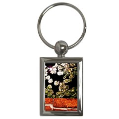 Highland Park 4 Key Chains (rectangle)