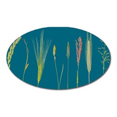 Grass Grasses Blade Of Grass Oval Magnet