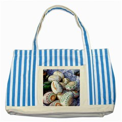 Model Color Traditional Striped Blue Tote Bag