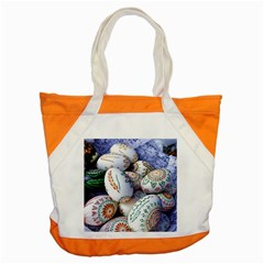 Model Color Traditional Accent Tote Bag by Nexatart