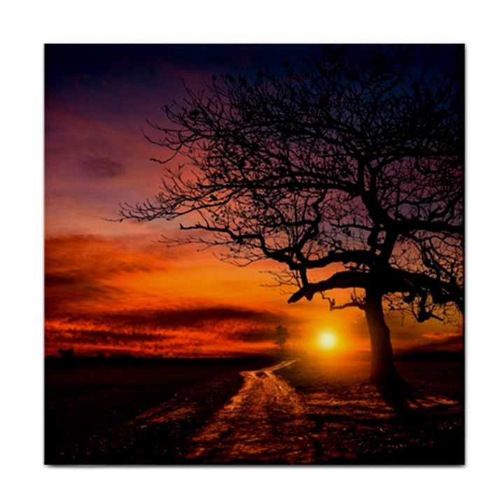Lonely Tree Sunset Wallpaper Tile Coasters