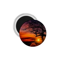 Lonely Tree Sunset Wallpaper 1.75  Magnets