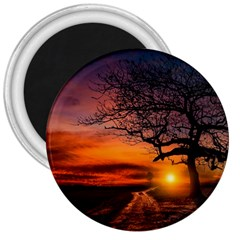 Lonely Tree Sunset Wallpaper 3  Magnets