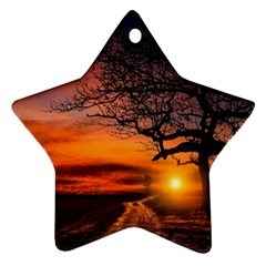 Lonely Tree Sunset Wallpaper Ornament (star)