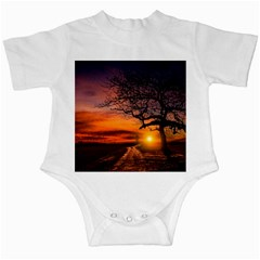 Lonely Tree Sunset Wallpaper Infant Creepers