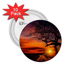 Lonely Tree Sunset Wallpaper 2.25  Buttons (10 pack)